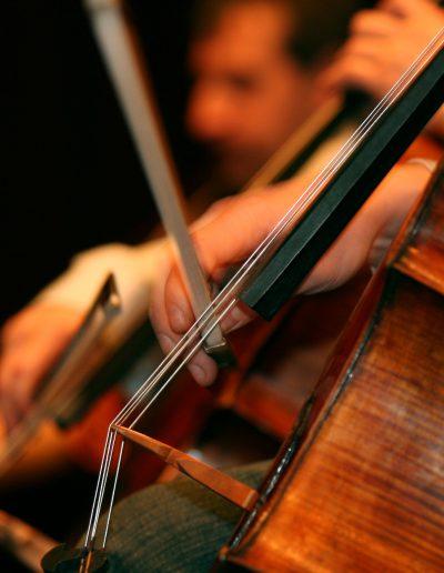 fotograf event modenschauen konzerte band forografBild Nr.2103051422_Titel Cello 1_Bilddaten 3504x2336 Pixel 1.383 KB